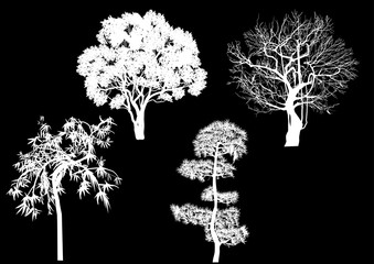 four different trees silhouettes isolated on black