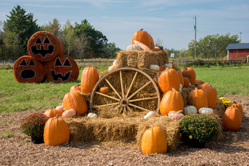 Fall Harvest display with pumpkins on the farm.