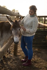 Young woman stroking foal while standing at barn