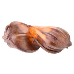 nypa palm fruit in Thailand, close up of nypa seed isolated on white background