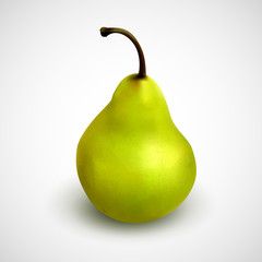 Realistic green pear. Vector illustration of delicious fruit isolated on grey background