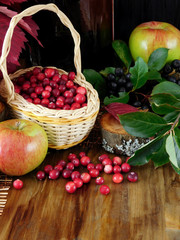 Freshly picked cranberries (or lingonberries) in a wicker basket and scattered on a wooden table
