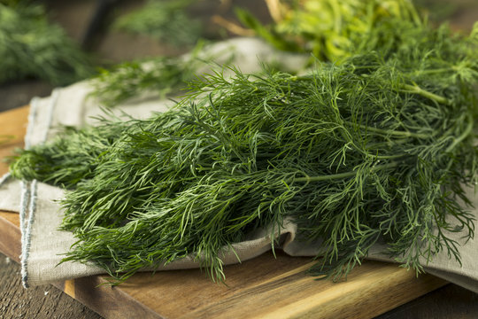 Raw Green Organic Whole Baby Dill