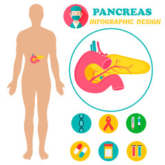 Infographic poster with pancreas image and human body
