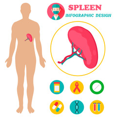 Poster with image of human body with pancreas.