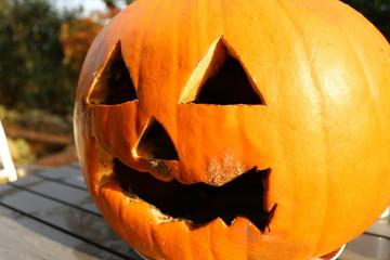 Halloween, Kürbis, Halloween is over, fauliger Kürbis, Schimmel