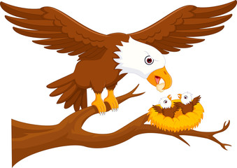 Sweet eagle mother and eagle junior cartoon
