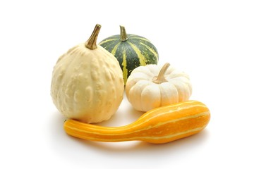 Various ornamental pumpkins (Cucurbita)