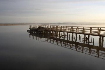 Lake Federsee, boardwalk, morning mood, reflection, nature reserve, Biberach district, Upper Swabia, Baden-Wuerttemberg, Germany, Europe