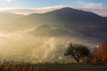 tree by the countryside road on foggy sunrise. beautiful mountainous scenery with village down the valley in late autumn