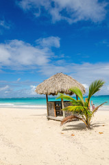 Amazing beach with exotic hut, Dominican Republic, Caribbean Islands