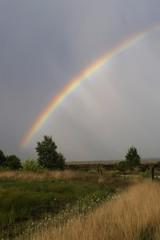 Rainbow over the moor, Haren, Emsland, Lower Saxony, Germany, Europe