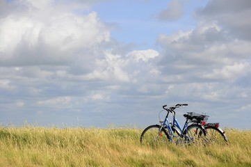 Two bicycles on the salt marshes of Hamburger Hallig, North Frisia, Schleswig-Holstein, Germany, Europe