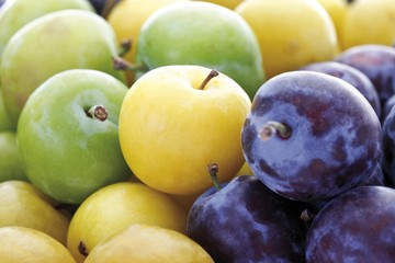 Greengages (Prunus italica), yellow plums and plums
