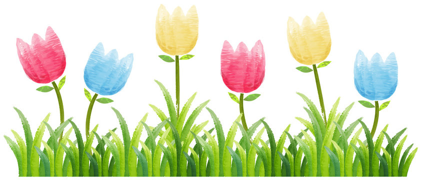 5,828 BEST Tulips Clipart IMAGES, STOCK PHOTOS & VECTORS | Adobe Stock