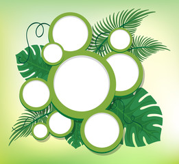 Border design with round frames on green leaves