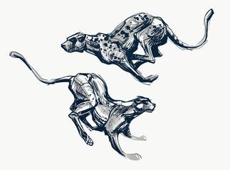 Running cheetah fast ink sketch