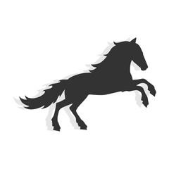 Pegasus logo design template