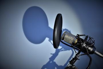 microfono ombra