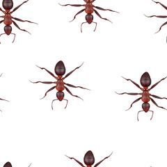 seamless pattern with ants, 3d