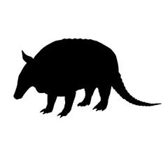 Armadillo silhouette. Black white icon. Vector illustration.