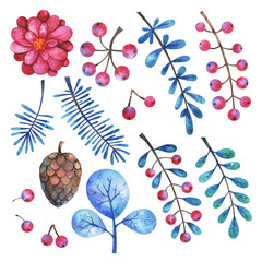 Watercolor floral elements set. Hand painted branches, flowers, plants and berries isolated on white background. Botanical clip art. Winter illustration