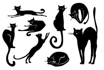 Collection of black cats