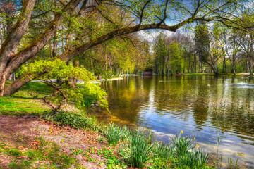 Frühlingserwachen im Kurpark Bad Aibling