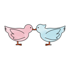 doves birds icon over white background vector illustration