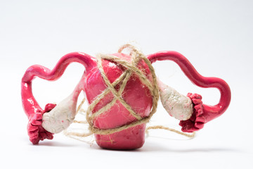 Concept photo of uterus menstrual cramps, pain and painful menstruation (dysmenorrhea). Rope tightens around model of uterus with ovaries, symbolizing spasm, pain that occurs when painful menstruation