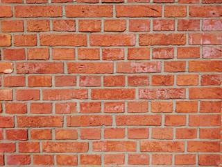 Fototapeta kolorowe ściany z cegły
