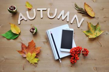 autumn composition background
