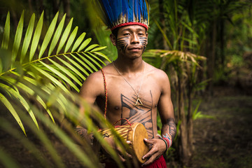Indigenous man from Tupi Guarani tribe in the jungle, Brazil