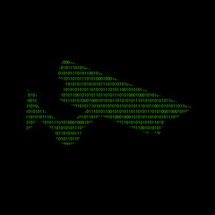 Hacker - 101011010 Icon - Videoüberwachung