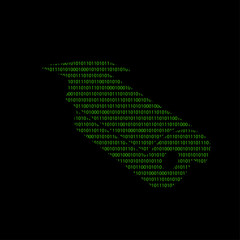 Hacker - 101011010 Icon - Überwachungskamera