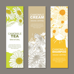 Set of vector backgrounds for label or package. Sketch hand drawn illustration of camomile flowers on watercolor background. Concept for natural herbal tea and organic cosmetics badges.