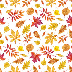 Watercolor autumn leaves vector pattern