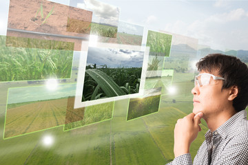 Wall Mural - iot,Internet of things(agriculture concept),smart farming,industrial agriculture.Farmer thinking and look up to use augmented reality technology to control ,monitor and management the data in the farm