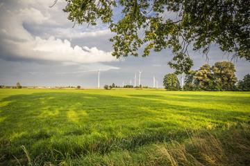 windturbine on a field
