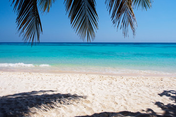 White sand beach on Koh Rok island in southern Thailand