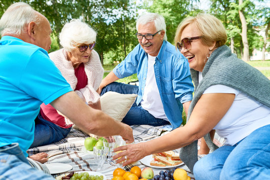 Joyful group of seniors having picnic at sunny green park: they chatting animatedly with each other and enjoying fresh air