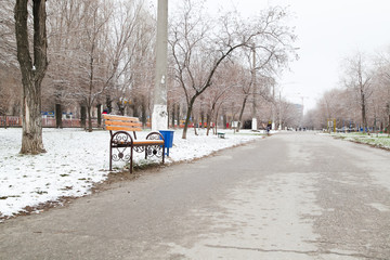 The road in the park, a bench and a garbage ballot box