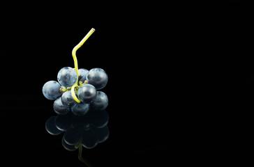 Racimo pequeño uva garnacha fondo negro