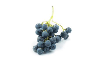 Racio uva garnacha fondo blanco