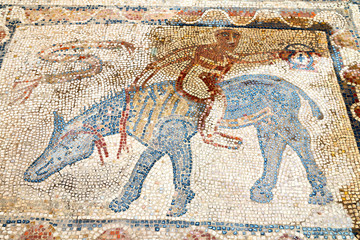 roof mosaic in the old city morocco  man wolf