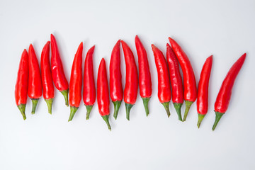 row of red pepper isolated on white background