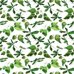 Clematis leaves ornament