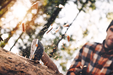 Strong and brutal lumberjack with ax in his hands chops tree in forest, wood chips fly apart. Blurred background