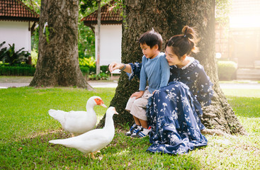 Concept of a happy family, Mother and son playing with pets in the backyard in the morning and activities that help strengthen the development of the children. To create a warm for the family.