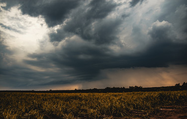 Pictures before the formation of a great dark and dramatic storm clouds.